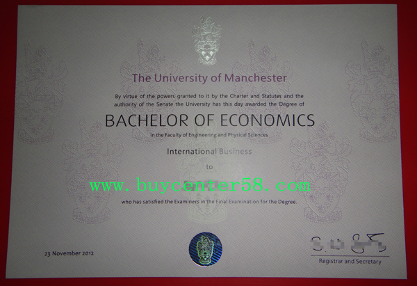 University of Manchester degree