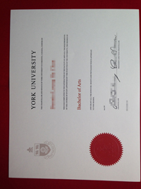 Where to buy York University degree from CAD? buy diploma.
